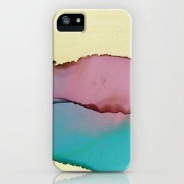 Liege iPhone Case