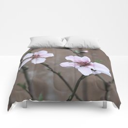 Peach Blossoms Comforters