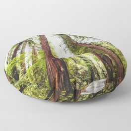 humboldt redwood forest Floor Pillow