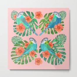Tropical Budgies on Pink Metal Print