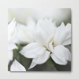 Snow White Flowers on a Dark Background #decor #society6 #buyart Metal Print