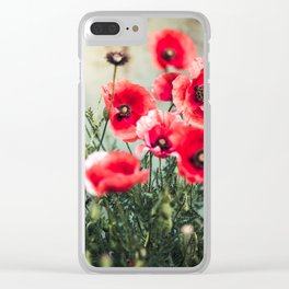 Fresh Poppies In Bloom Clear iPhone Case