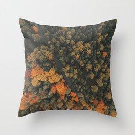 Autumn Passage Throw Pillow