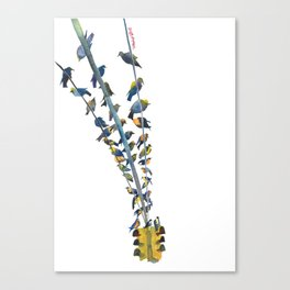 Birds on traffic lights Canvas Print