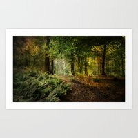 woodland Art Prints featuring Woodland by ZenaZero