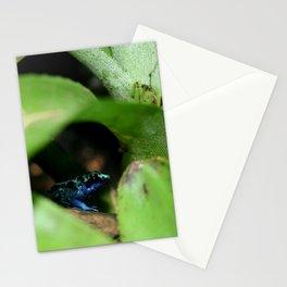 Poison Dart Frog- Dendrobates Azureus Stationery Cards