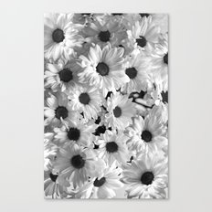 Daisy Chaos in Black and White Canvas Print
