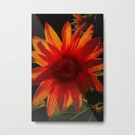Sunflower Survivor Metal Print