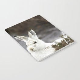 white mountain hare Notebook