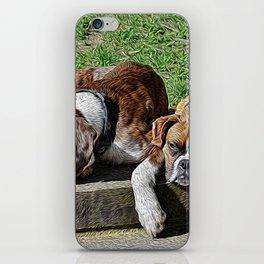 Pair of Boxers iPhone Skin