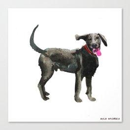 watercolor dog vol 16 silver labrador Canvas Print