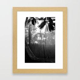 Morning Mist Maldives Framed Art Print