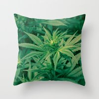 marijuana Throw Pillows featuring Marijuana Plants  by Limitless Design