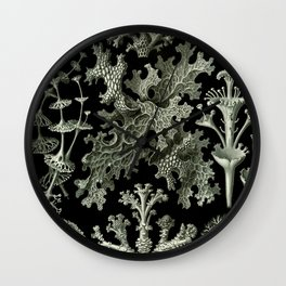 Naturalist Lichen Wall Clock