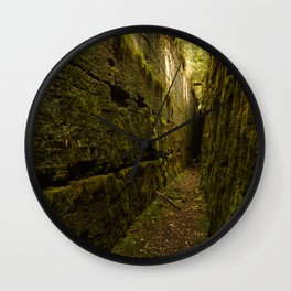 Nature's Secret Wall Clock