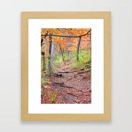 Autumn Roots Framed Art Print