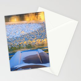 Beauty on Ice kayaking on McCloud Reservoir Stationery Cards