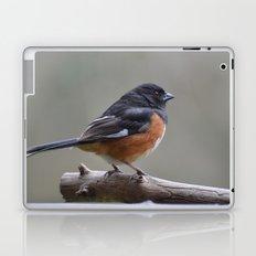 Eastern Towhee Laptop & iPad Skin
