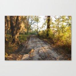 Savannah Morning Road Canvas Print