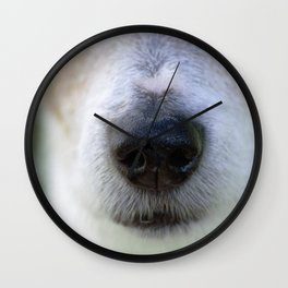 It's a Jack Russell Wall Clock