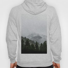 Faded Forest Landscape Hoody