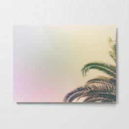 Minimal - Palm tree leafs photography I  Metal Print