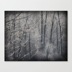 The Frosty Forest Canvas Print