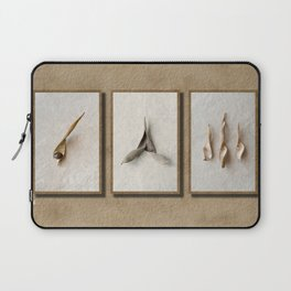Wisteria Seed Pods Laptop Sleeve
