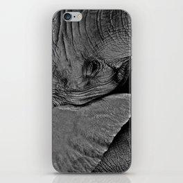 Beauty is Skin Deep iPhone Skin