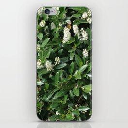green/white iPhone Skin