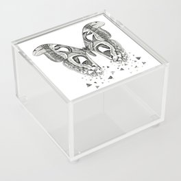 Atlas Moth Acrylic Box