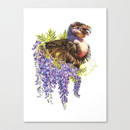 California Condor wih Wisteria Canvas Print