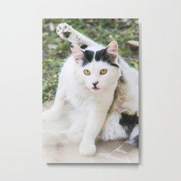 Cat Yoga Metal Print