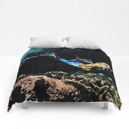 Siren Song Comforters