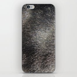CAT FUR iPhone Skin
