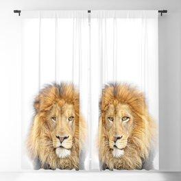 Lion Animals Art by Zouzounio Art Blackout Curtain