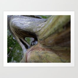 Forest Shapes Art Print