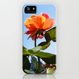 Rose & Sky iPhone Case