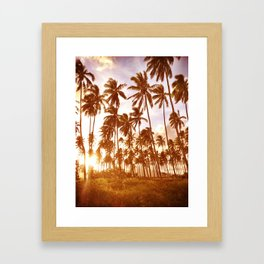 Princess Palms Framed Art Print