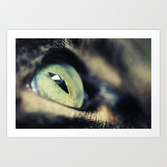 Green Iris Art Print
