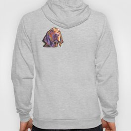Vizsla Dog Portrait bright colorful fun Pop Art by LEA Hoody