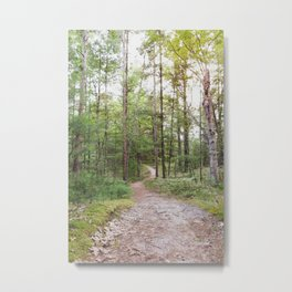 Going Places - Nature Photography Metal Print