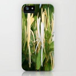 Closeup shot of Lonicera European Honeysuckle Flower iPhone Case
