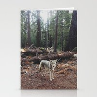 rare Stationery Cards featuring Injured Coyote by Kevin Russ