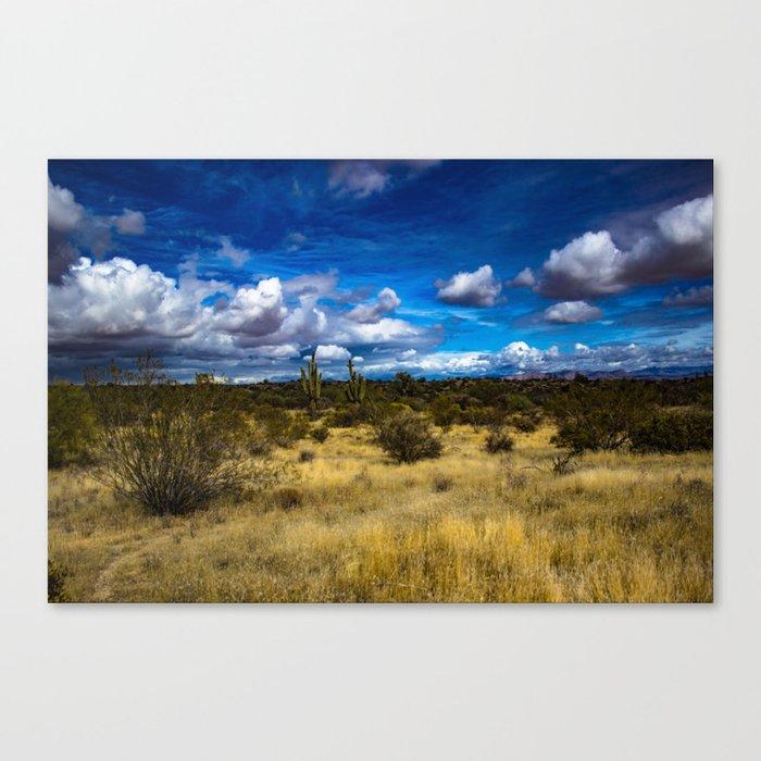 Blue sky desert view Canvas Print
