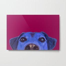 Dog nose, Pop art dog portrait Metal Print