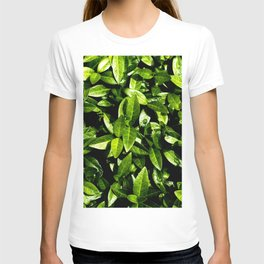Small green leaves with rain drops T-shirt