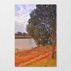 Park life Canvas Print