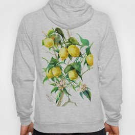 Lemon Tree. lemons kitchen art Hoody