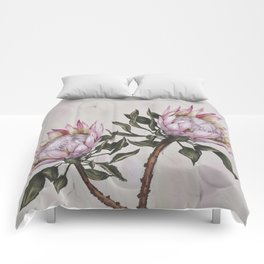 Protea Flowes Exoticbig flowers Comforters